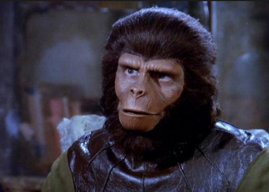 【勉強会レポ】サルでもわかるビジネスの勉強会久々に開催しました!『月1ゆる〜いオンビジ勉強会』